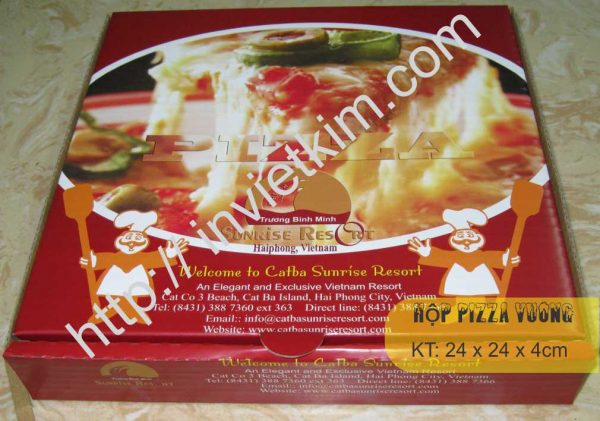 hộp pizza carton